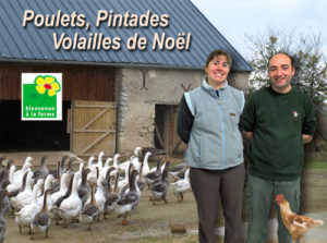 Volaille poulet pintade