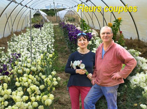 Annie et Didier GIRARD